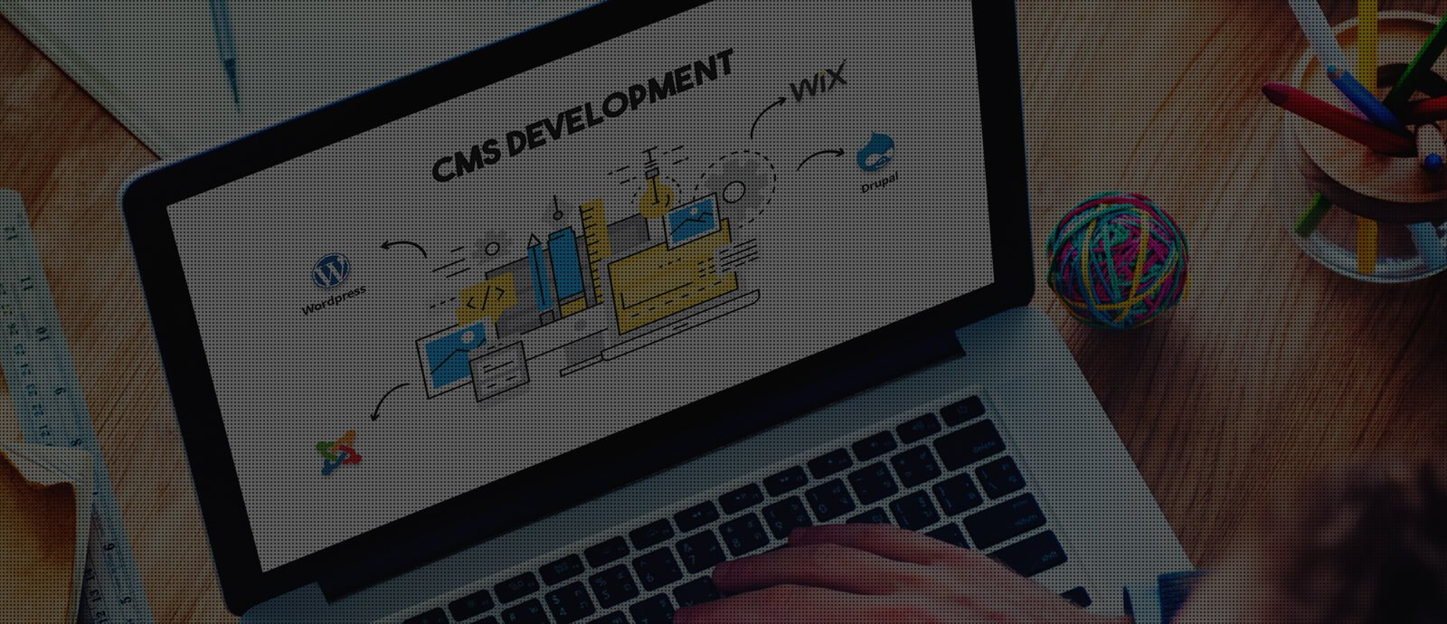 Ingenious Netsoft CMS Packages