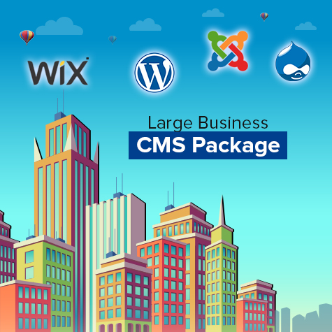 large-business-cms-package