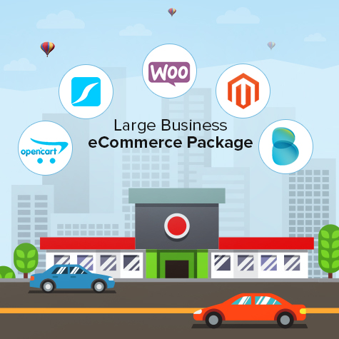 large-business-ecommerce-package
