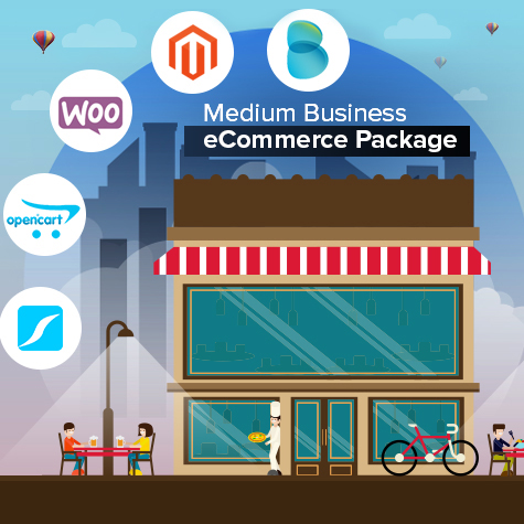 Medium Business Ecommerce Package