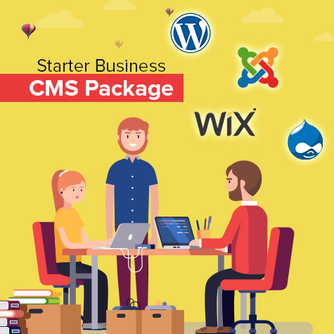 starter-business-cms-package